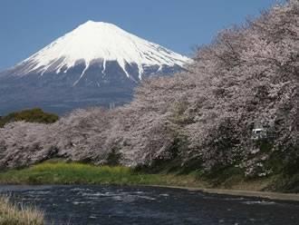 四季折々の富士山に癒されます