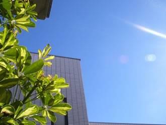 温暖な気候で日照時間が長く暮らしやすい!
